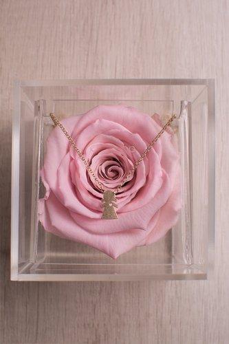 Caja transparente + Rosa preservada rosada + Collar de plata bañado en oro 18K.  Medidas: 10 cm x 10 cm