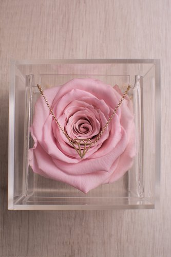 Caja transparente + Rosa preservada + Pulserade plata bañadaen oro 18K  Medidas: 10 cm x 10 cm