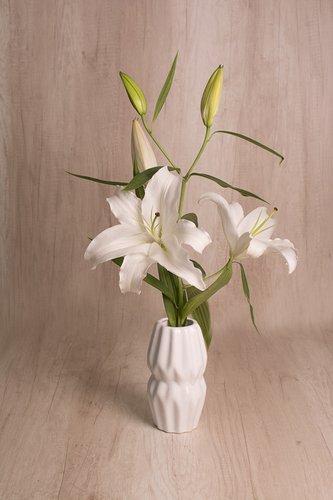 Florero de cerámica + Lirios  Medidas florero: 17cm x 12 cm