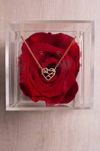 Caja transparente + Rosa preservada + Collar de plata bañado en oro 18K. Medidas: 10cm x 10cm