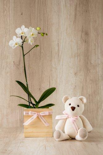 Cubo de madera + Orquidea Blancapequeña + Osita La Botánika.  Medida base: 14cm x 14cm.  * Para comprar un color de orquidea especíco escribenos a pedidos@la-botanika.com