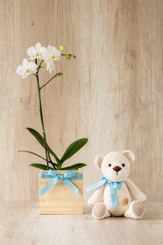 Cubo de madera + Orquidea Blancapequeña + OsitoLa Botánika.  Medida base: 14cm x 14cm.  * Para comprar un color de orquidea especíco escribenos a pedidos@la-botanika.com