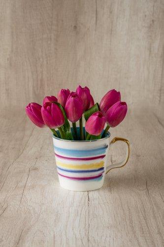 Taza importada + 10 Tulipanes Fuccias.
