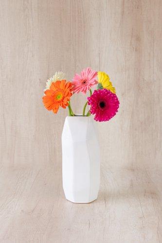 Florero de cerámica blanco+ 5 Gerberas.  Medidas florero: 28cm x12cm  *Color de Gerberas podria variar. Para solicitar un color especifico, escríbenos a pedidos@la-botanika.com.