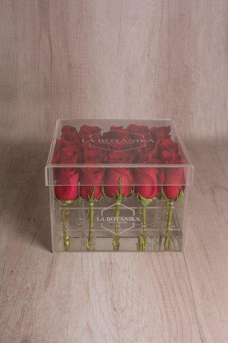 Caja cuadradatransparente + 25 Rosas.  Medida base: 21cm x 19cm